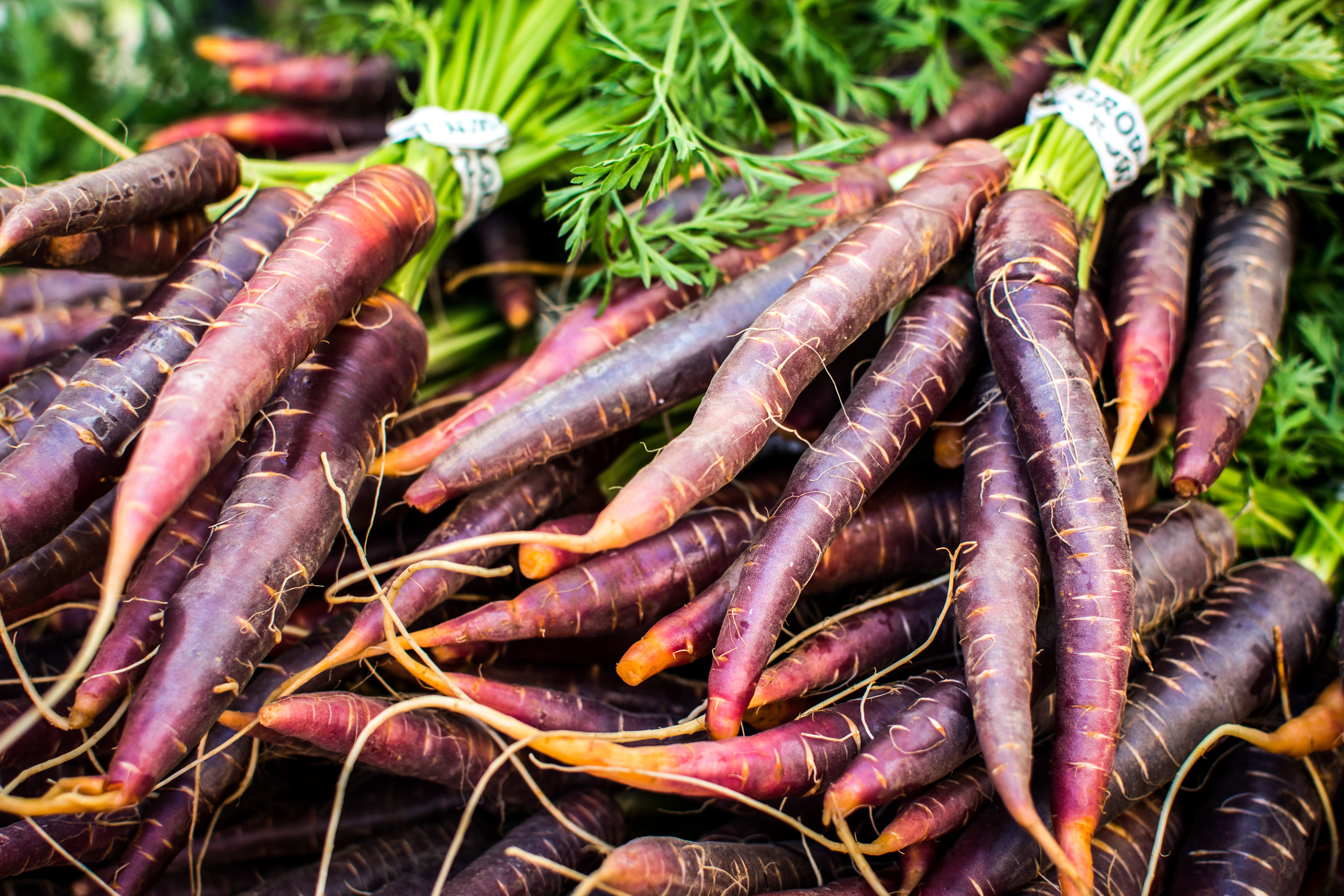 foodiesfeed.com_red-carrots-at-farmers-market